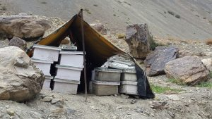 Honey in Spiti