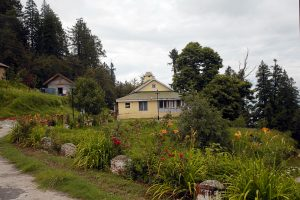 The Dharanghati Forest Rest House