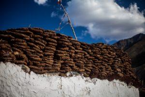 Zanskar Village houses