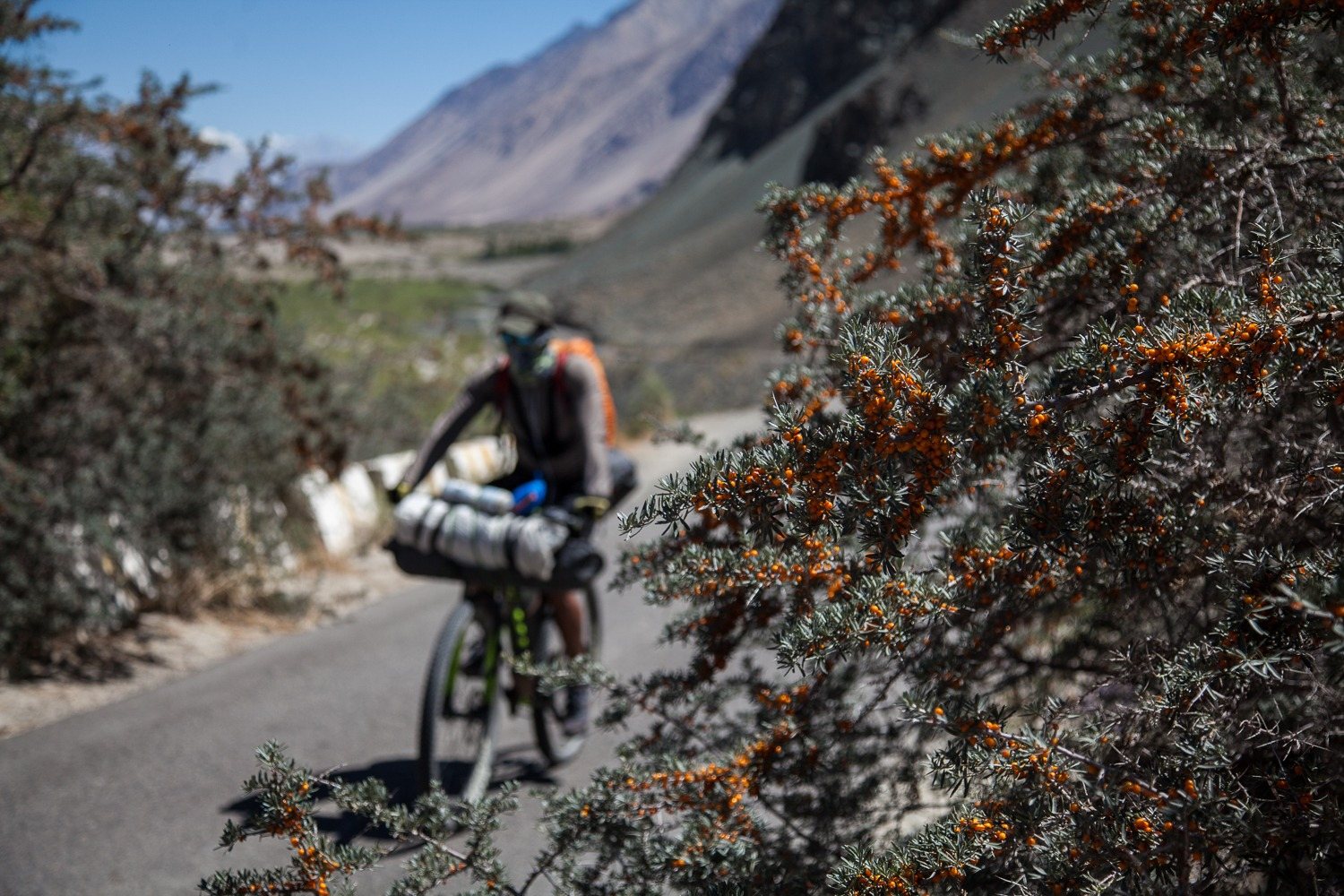90 Days Cycling in the Himalayas: Day 50: Hundar to Turtuk