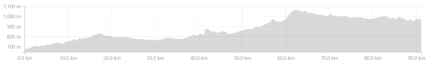 Elevation Profile from Tarekere to Belur