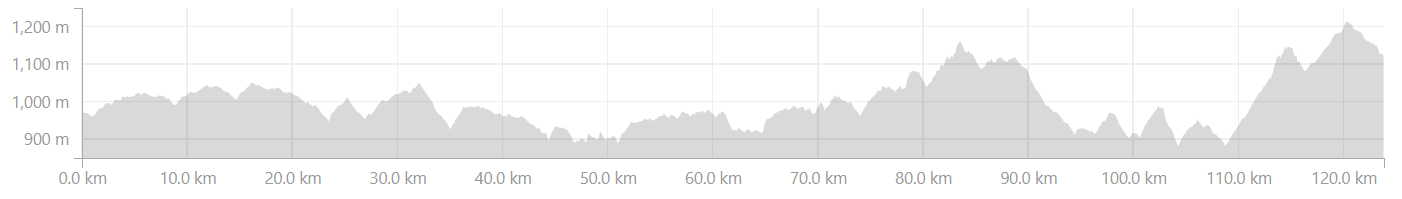 Elevation profile from Belur to Madikeri