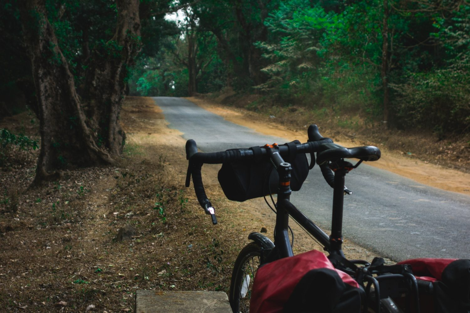 Cycling through the western ghats